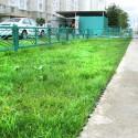 Укрепление и защита грунта Казань - георешётка, геотекстиль, газонная решётка, бордюр садовый
